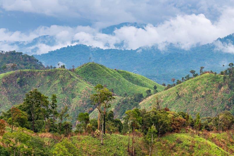 Komplexitet av berglandskapet och trädmångfald av skogen med härliga låga moln överst royaltyfria bilder