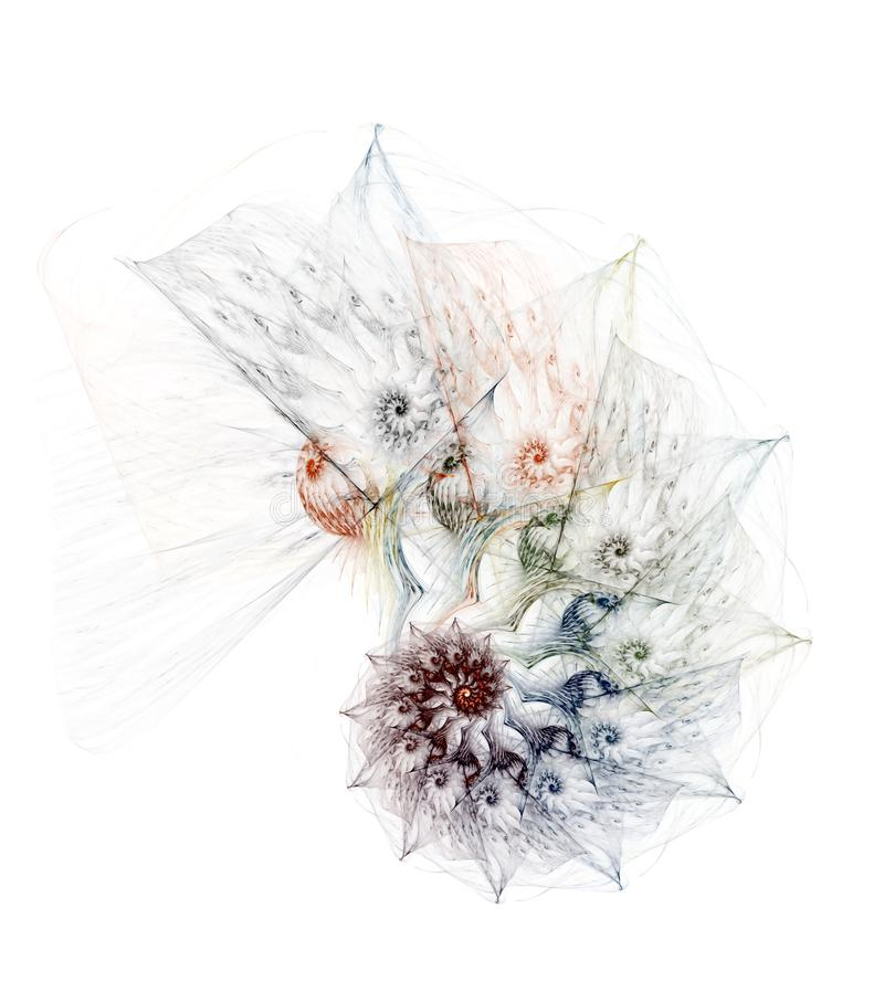 Komplizierter Nautilus auf einem weißen Hintergrund stock abbildung
