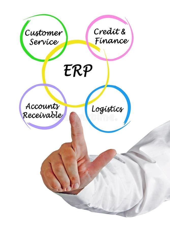 Komponenten von ERP lizenzfreies stockfoto