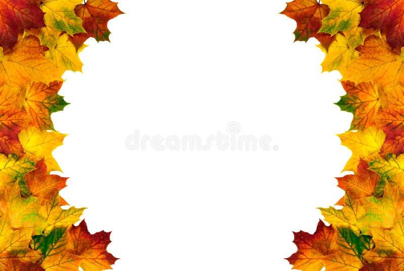 komponująca jesień granica opuszczać komponujący zdjęcie stock