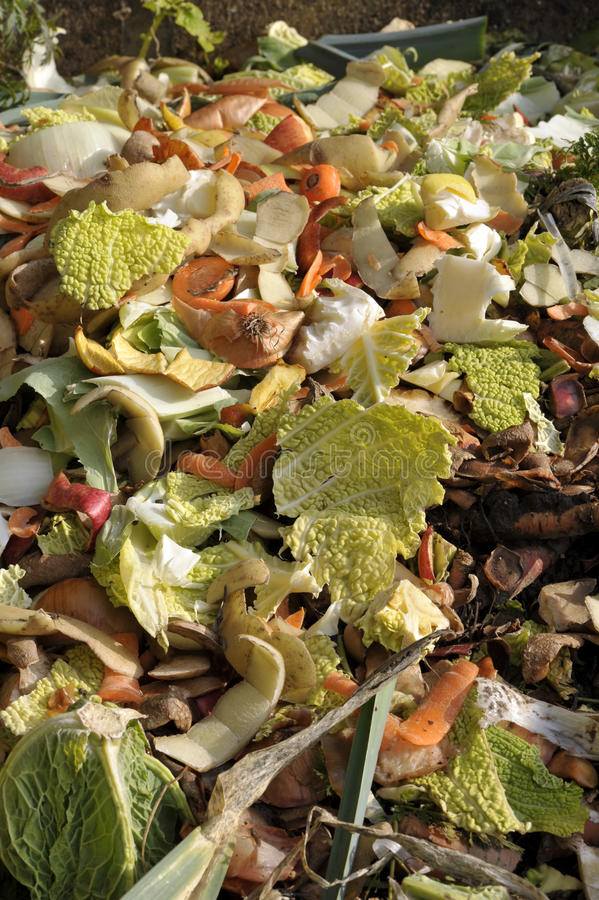 Komposthög royaltyfri bild