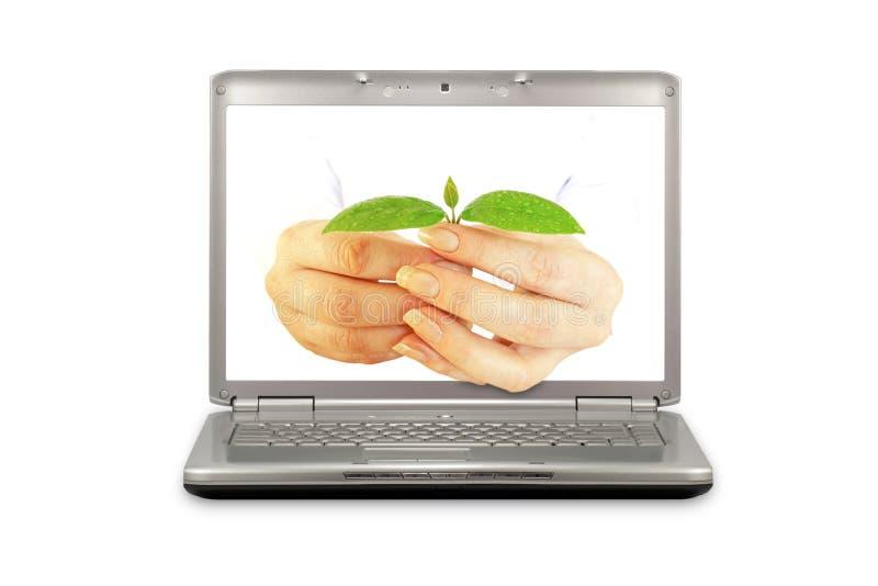 komputer ekologia zdjęcie royalty free