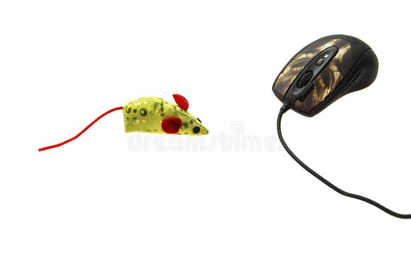 Komputerowa mysz i jaskrawy barwiony zabawkarski pojęcie zdjęcie stock