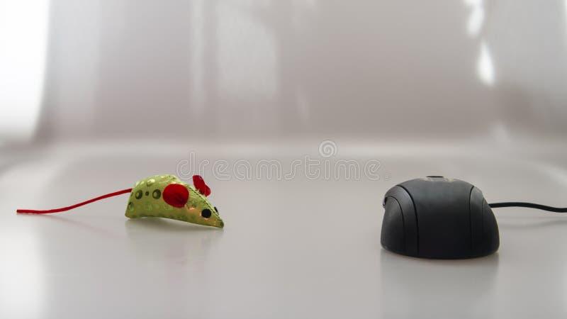 Komputerowa mysz i jaskrawy barwiony zabawkarski poj?cie fotografia stock