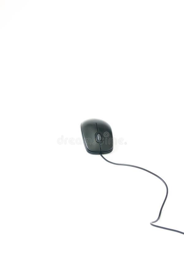 Komputerowa mysz na białym tle obraz royalty free