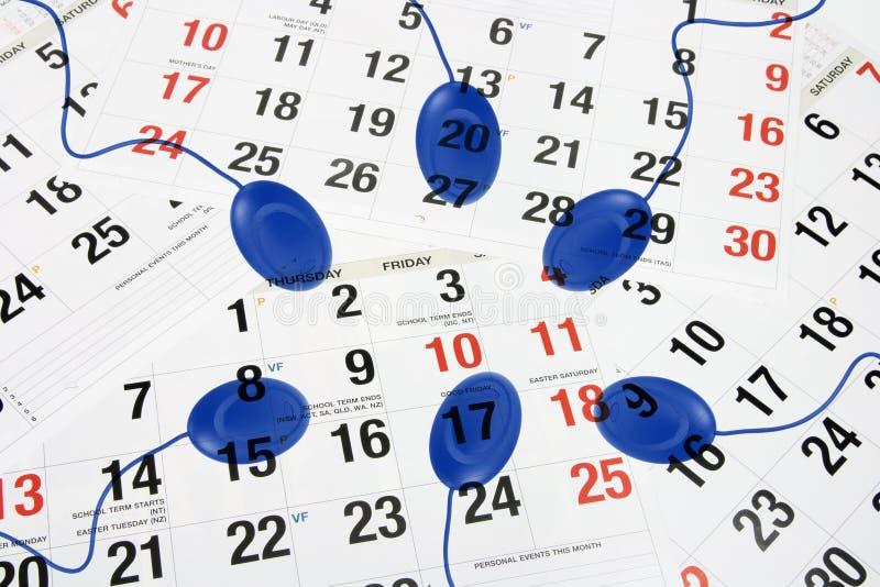 Komputerowa mysz na kalendarzu zdjęcia royalty free