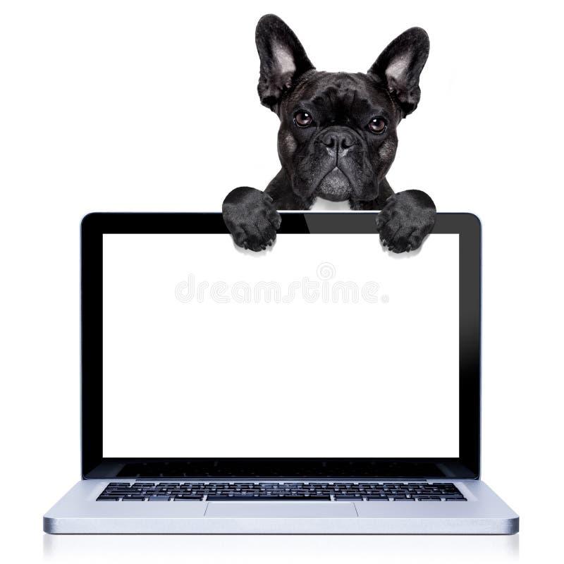 Komputeru pies obraz royalty free