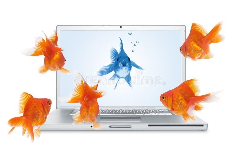 komunikacja online obrazy stock