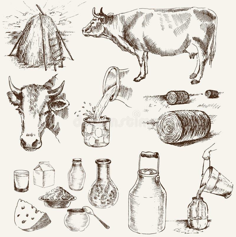 kon mjölkar produkter stock illustrationer