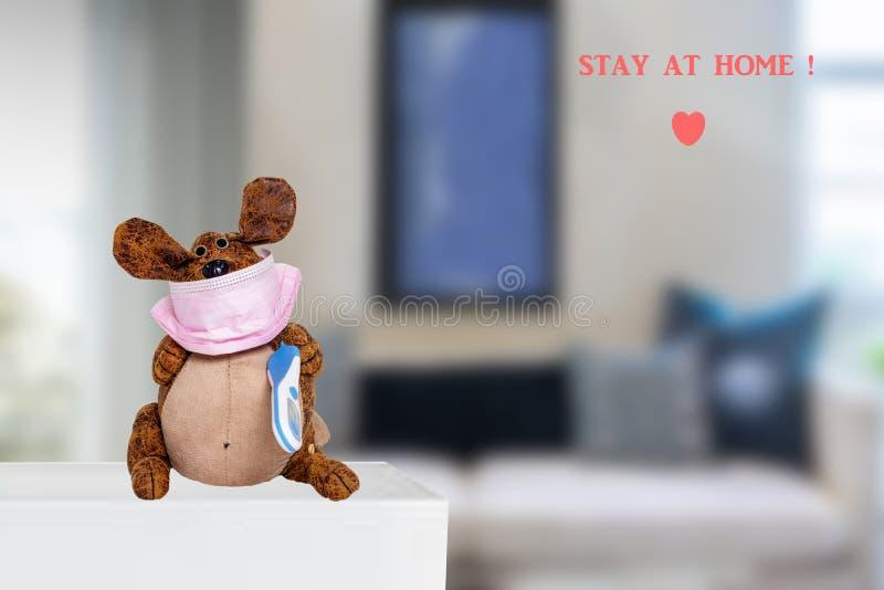 Koncepcja kwarantanny koronawirusów Zabawny pies w domu noszący maskę chirurgiczną i termometr gorączkowy nad zamazanym biurem. Z zdjęcie stock