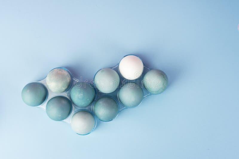 Konceptualna życie fotografia kilka błękitni jajka w plastikowym geom wciąż fotografia royalty free