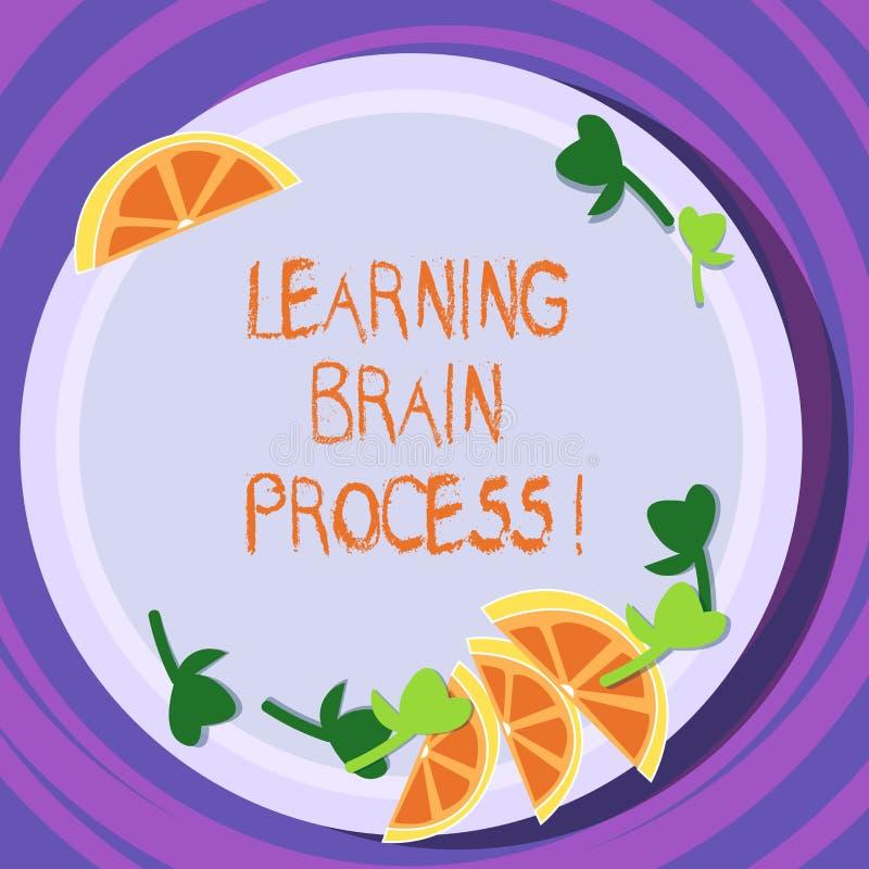 Konceptualna ręka pisze pokazywać uczenie mózg proces Biznesowy fotografia teksta nabywanie nowy lub modyfikuje istnieć royalty ilustracja