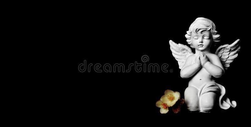 Kondolencje karta z opiekunu jaśminem i aniołem kwitnie na czarnym tle obraz stock