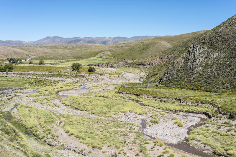 Kondor, Quebrada de Humahuaca, Jujuy, Argentinien lizenzfreies stockfoto