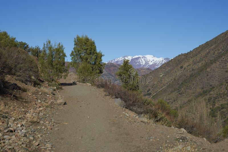 Kondor-Spur in Orten Parque Yerba, Chile stockbilder