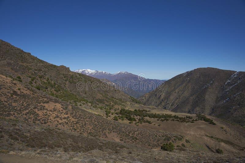 Kondor-Spur in Orten Parque Yerba, Chile stockfotografie