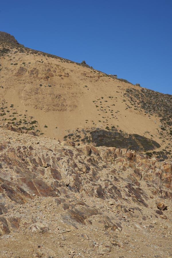 Kondor-Spur in Orten Parque Yerba, Chile stockfotos