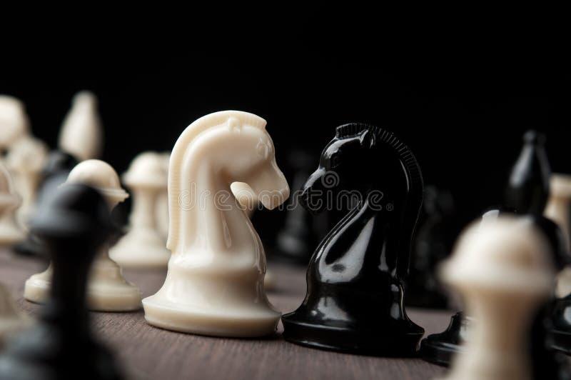 Konfrontacja szachowi rycerze obrazy stock