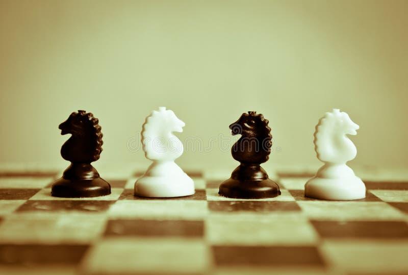 Konfrontation royaltyfri foto