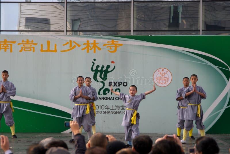 Kongfu chinês imagens de stock