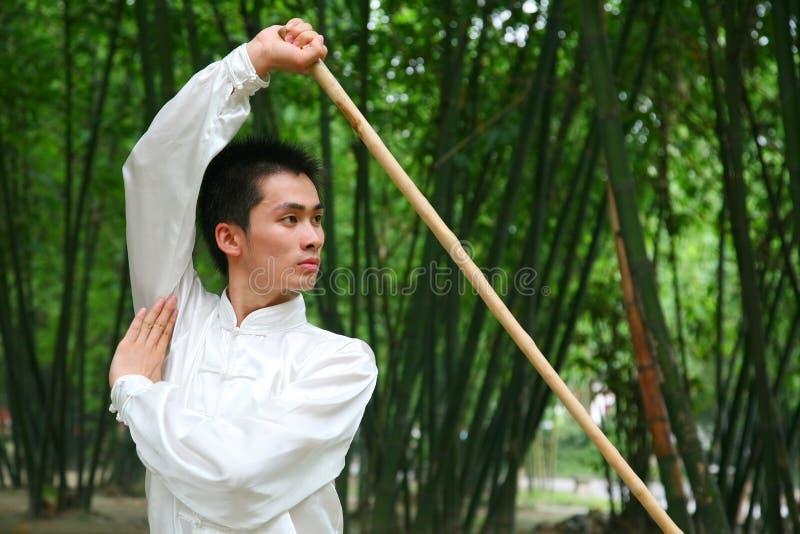 kongFu chinês fotos de stock royalty free