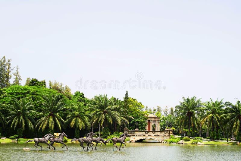 Konia bieg na wodzie, wniebowzięcie uniwersytet, Thailand fotografia stock