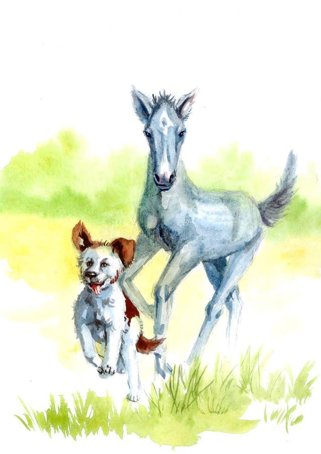 Konia i psa akwarela ilustracja wektor
