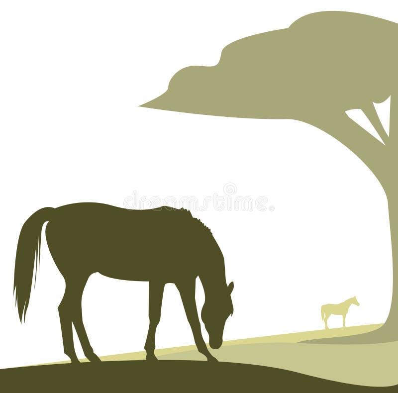 konia pastwiskowy wektor ilustracji