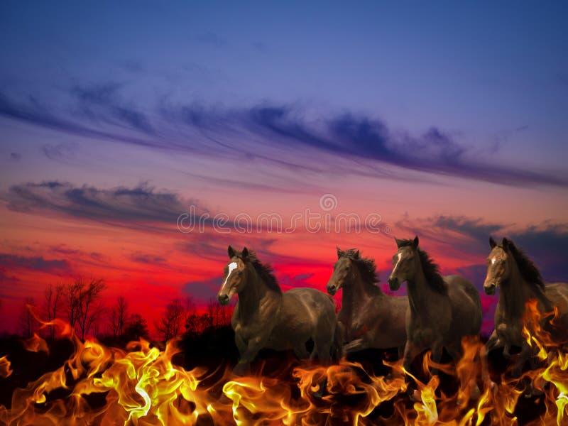 Konie apokalipsa zdjęcia stock
