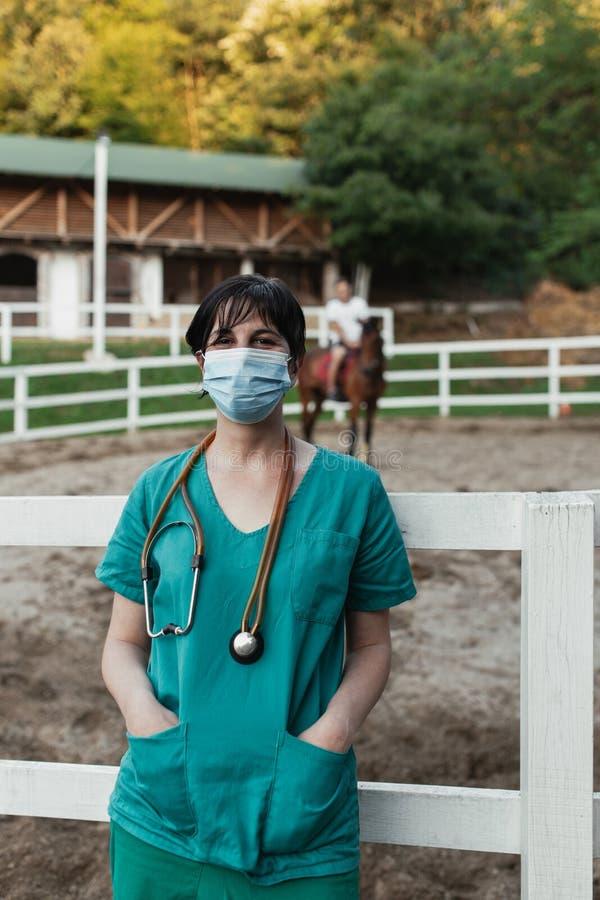 Konie i weterynaryjna praca obraz stock