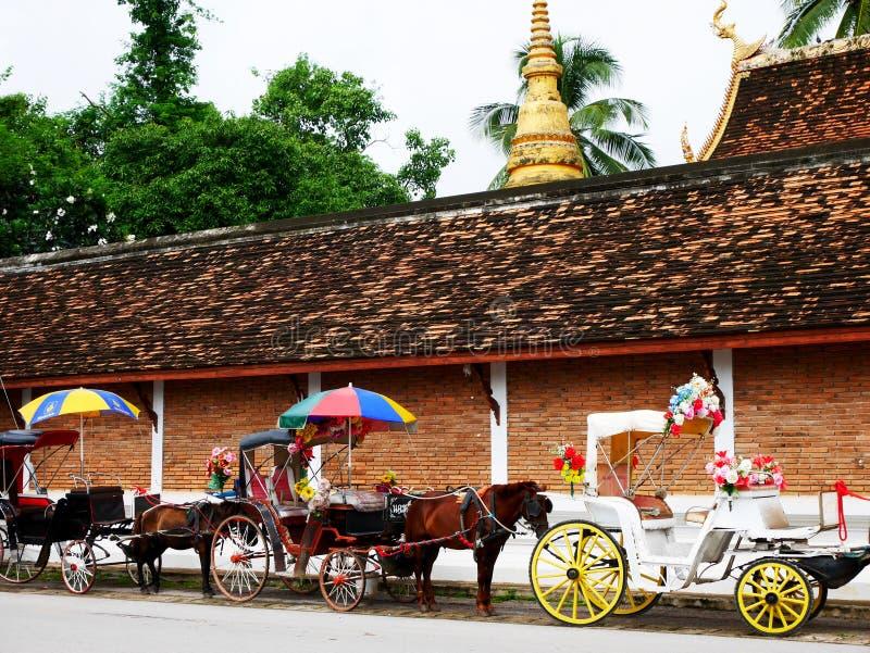 Konie rysujący karecianych czekanie podróżników tajlandzcy ludzie używają usługową wycieczkę turysyczną wokoło miasta przy Watem  fotografia royalty free