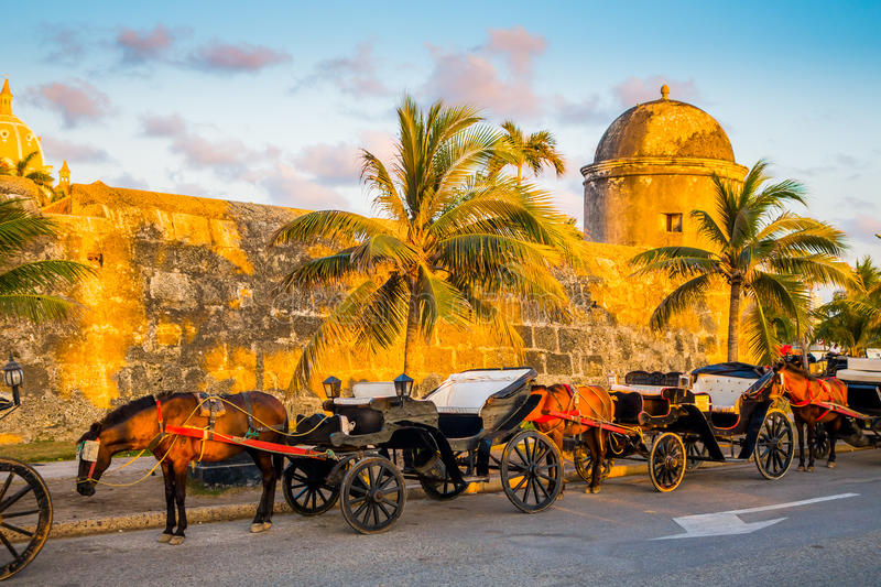 Konie rysujący turystyczni frachty w historycznym Hiszpańskim kolonialnym mieście Cartagena De Indias, Kolumbia zdjęcia stock