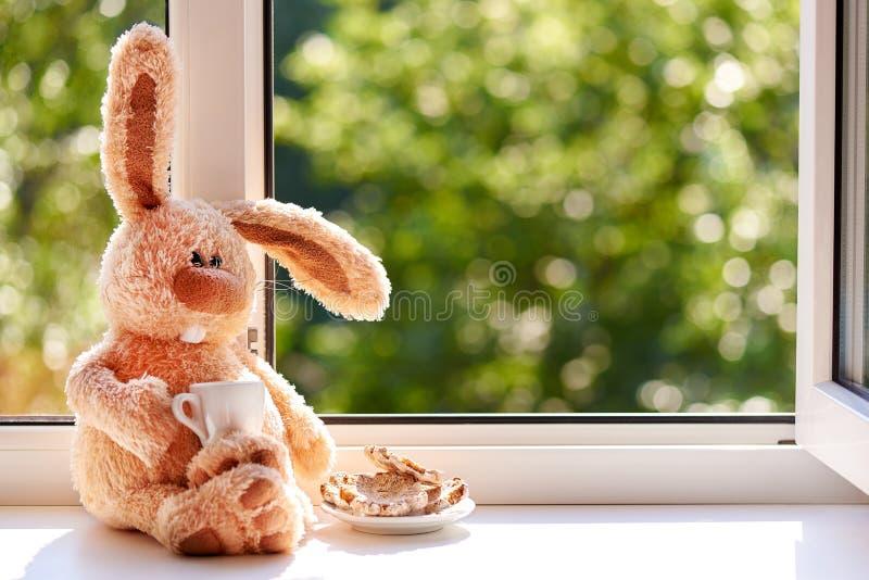 Konijn met een kop koffie en koekjes in de ochtend dichtbij het open venster Goedemorgen en Gelukkige dag De ruimte van het exemp stock afbeelding