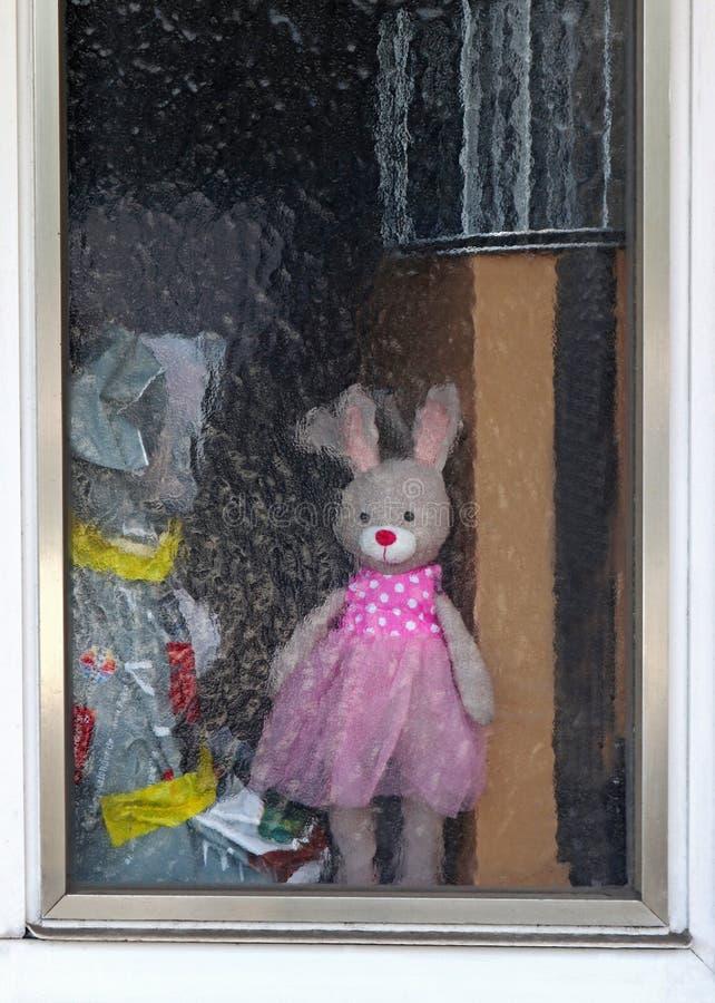 Konijn zacht stuk speelgoed met de roze kleding van Tulle achter het berijpt glasscherm stock afbeelding