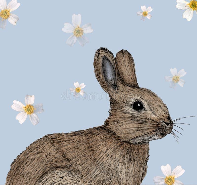Konijnillustratie in pen met digitale kleur wordt getrokken die stock illustratie
