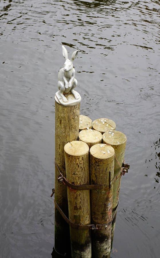 Konijnstandbeeld op de rivier in St. Petersburg, Rusland stock foto's