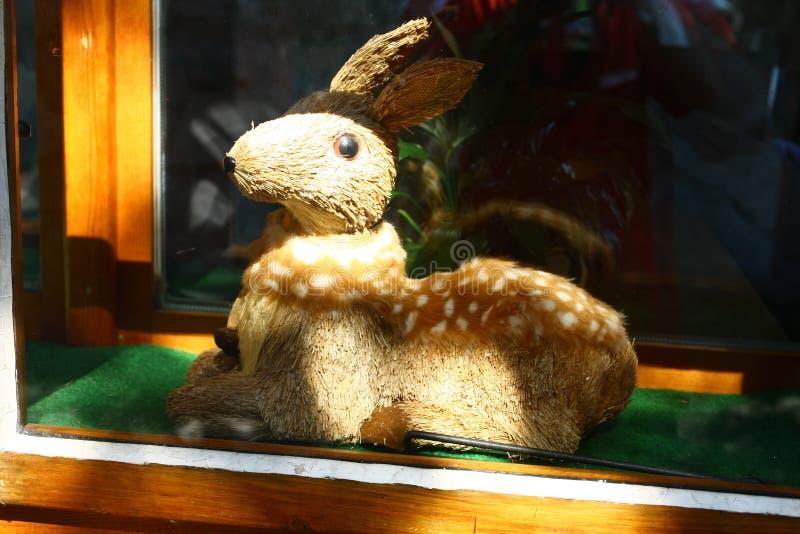 konijntje stock afbeeldingen