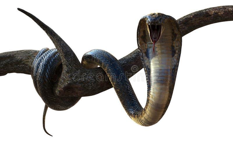 Koning Cobra Snake met Cliping-Weg royalty-vrije illustratie