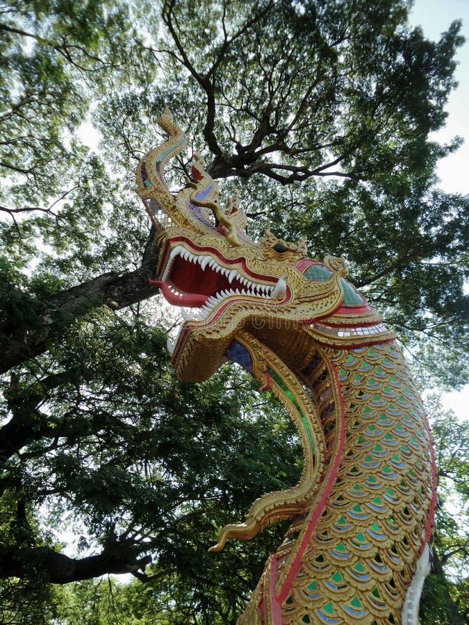 Koning die van Naga ingang van tempel bewaken onder grote boom stock foto
