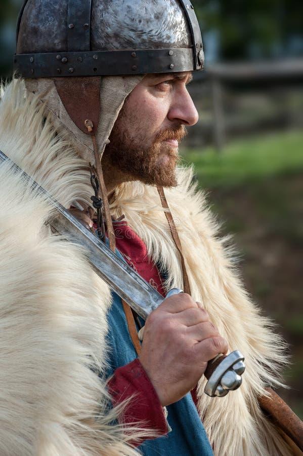 Koningsstrijder royalty-vrije stock afbeeldingen