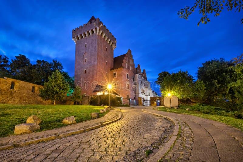 Koninklijk Kasteel in Poznan, Polen stock afbeelding