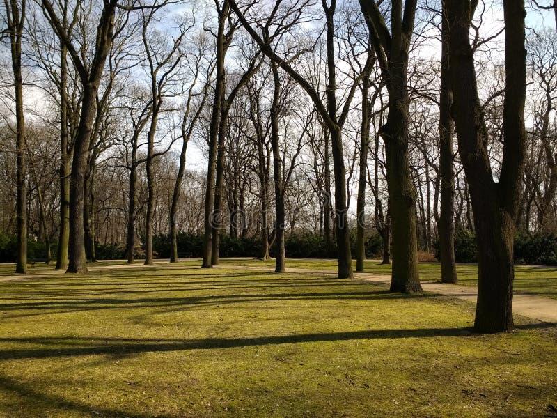 koninklijk park badkamers Warschau Polen royalty-vrije stock foto's