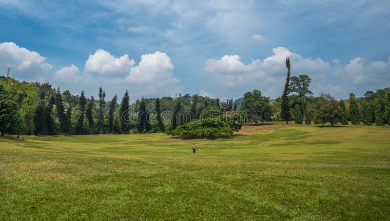 Koninklijke botanische tuinen, Kandy, Sri Lanka royalty-vrije stock afbeeldingen