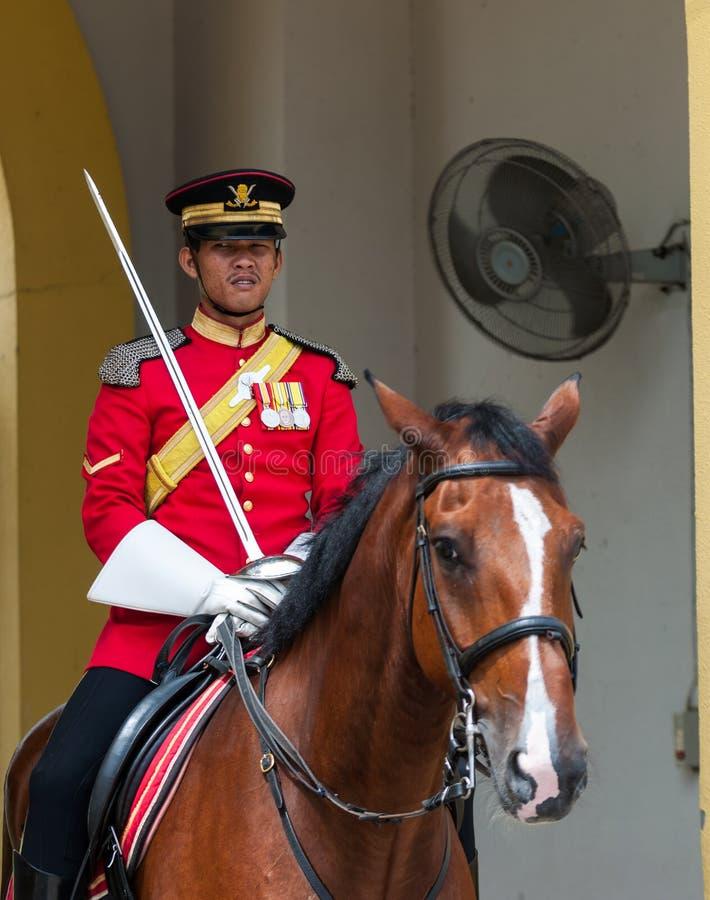 Koninklijke Wachten royalty-vrije stock foto