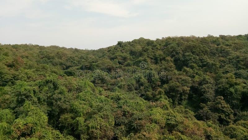 Konkan skönnisarga India Ratnagiri natur royaltyfri foto