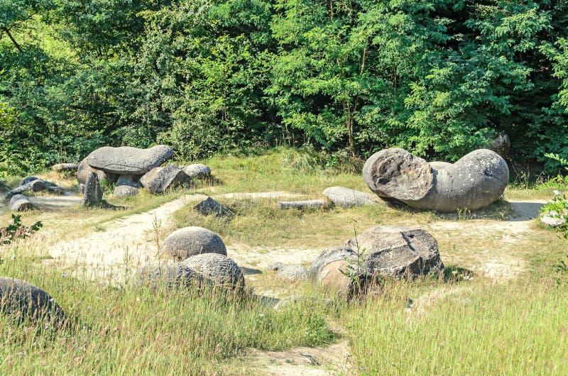 Konkrecja up, stary piasek narastający, trovant naturalny tworzący, cementowy, zdjęcia royalty free