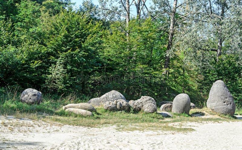 Konkrecja up, stary piasek narastający, trovant naturalny tworzący, cementowy, zdjęcie royalty free