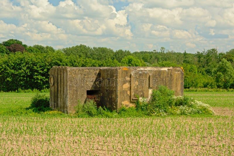 Konkret bunker för världskrig ett i ett fält i den flemish bygden royaltyfria bilder