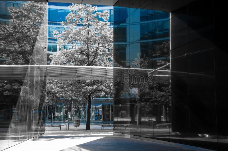 Konkret exponeringsglasdjungel av warsaw Monokromt foto av modern arkitektur med endast synlig blå färg royaltyfria foton