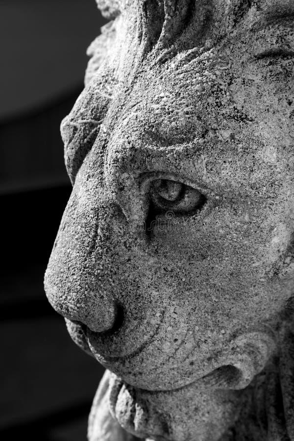 konkret lion royaltyfria bilder